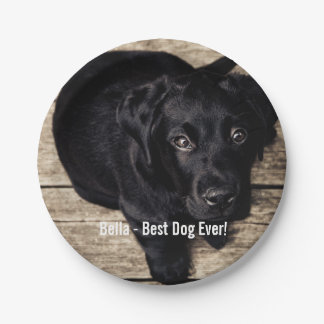Personalized Black Lab Dog Photo and Dog Name Paper Plate