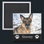 "Personalized Black Pet Photo Magnet<br><div class=""desc"">Personalized Black Pet Photo Magnet.</div>"