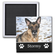 Personalized Black Pet Photo Magnet at Zazzle