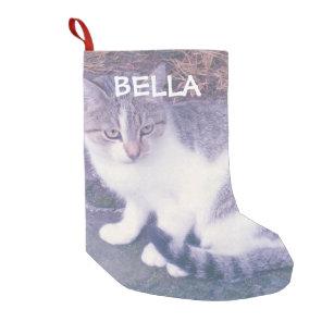 pet photo christmas stockings zazzle