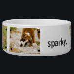 "Personalized Custom Photo and Name Dog Bowl<br><div class=""desc"">Customized dog food or water bowl with thumbtacks around each photo. Simply add your own fun puppy dog photos in place of the other images and add your own dogs name (or any other text you like)! Or, if you have a flashy fawn boxer, you might just want to leave...</div>"