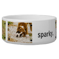 Personalized Custom Photo and Name Dog Bowl
