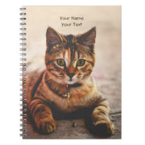 Personalized Cute Young Cat Kitten Kitty Pet Notebook