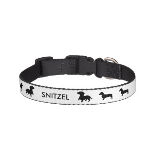 Personalized Dachshund Collar
