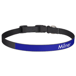 Personalized Dog Collar White on Blue