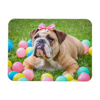 Personalized Dog Pet Photo Magnet