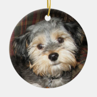Personalized Dog Photo Frame - DOUBLE-SIDED Ceramic Ornament