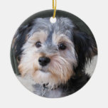 Personalized Dog Photo Frame - DOUBLE-SIDED Double-Sided Ceramic Round Christmas Ornament