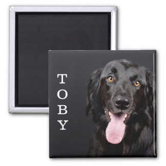 Personalized Dog Photo Refrigerator Magnet