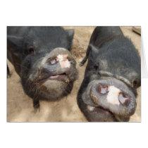 Personalized Double Snouts Black Mini Pigs