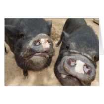 Personalized Double Snouts Black Mini Pigs Card