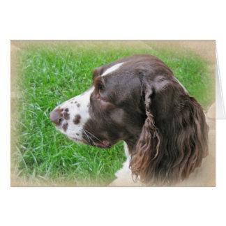 Personalized English Springer Spaniel Profile Card