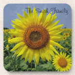 "Personalized Field of Sunflowers Coaster<br><div class=""desc"">Field of sunflowers coaster. Personalize with your text.</div>"