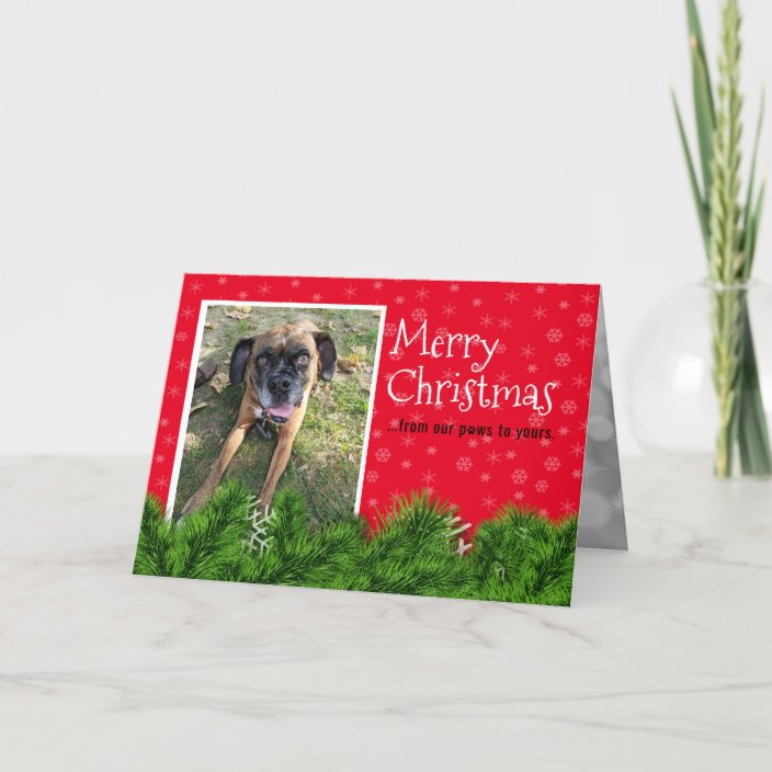 Personalized From The Dog Christmas