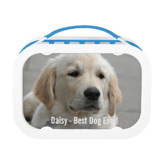 Personalized Golden Retriever Dog Photo and Name Lunch Box