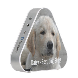 Personalized Golden Retriever Dog Photo and Name Speaker