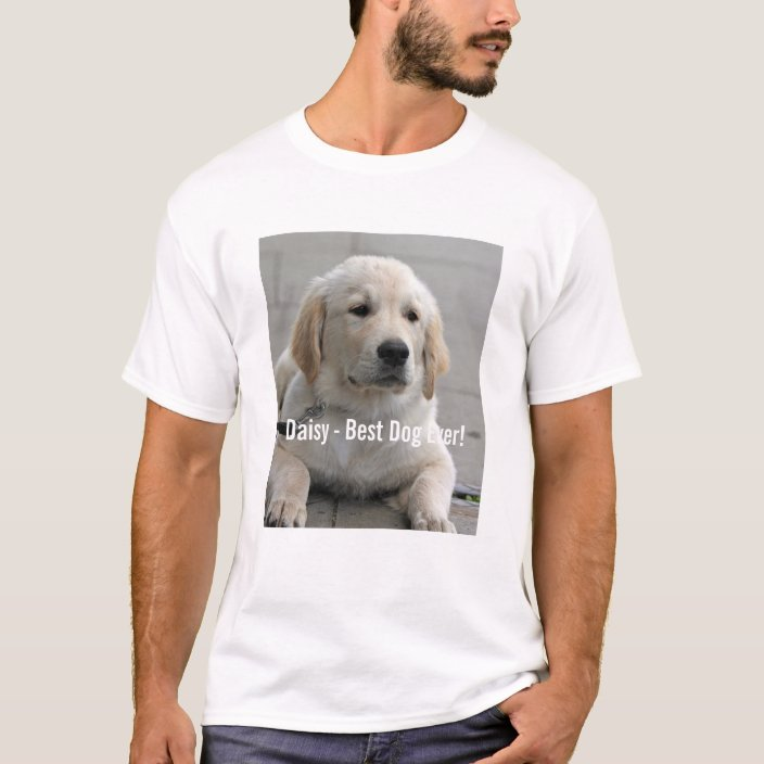 Golden Retriever Custom Embroidered Sweatshirt Shirt