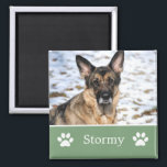"""Personalized  Green Pet Photo Magnet<br><div class=""""desc"""">Personalized Green Pet Photo Magnet.</div>"""