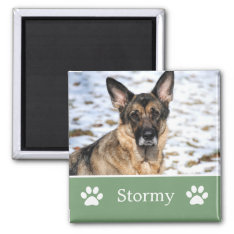 Personalized  Green Pet Photo Magnet at Zazzle
