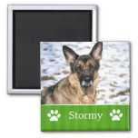 Personalized Green Stripes Pet Photo Magnet
