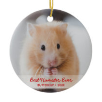Personalized Hamster Pet Photo & Name Christmas Ceramic Ornament