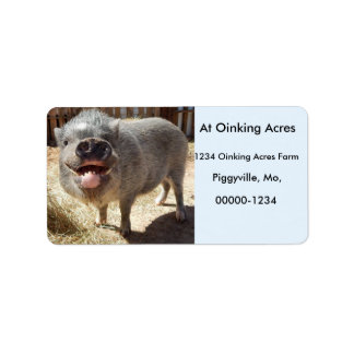 Personalized Happy Smiling Mini Pig Address Labels