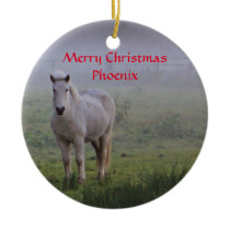 Personalized Horse friend Christmas ornament