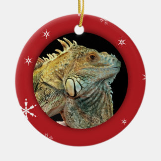 Personalized Iguana/Pet Photo Holiday Ceramic Ornament