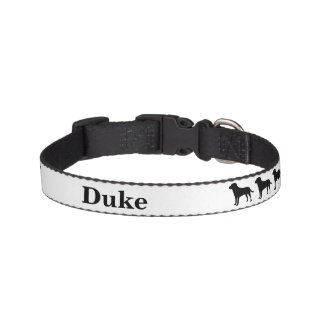 Personalized Labrador Dog Collar