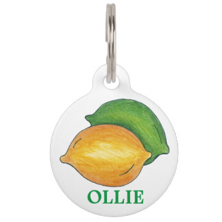 Personalized Lemon Lime Citrus Fruit Dog Pet Tag