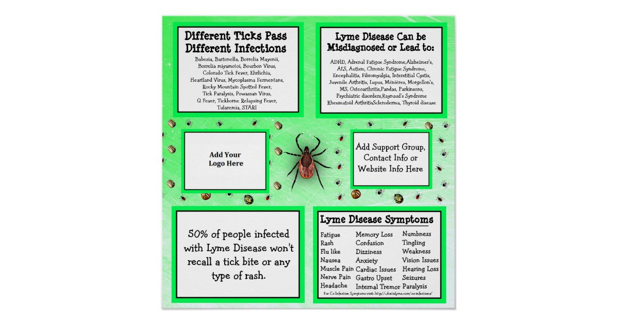 Personalized Lyme disease Information Poster   Zazzle com