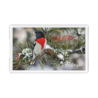 Personalized Merry Christmas Bird Acrylic Tray