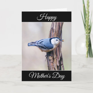 Personalized Mother's Day Nuthatch Card