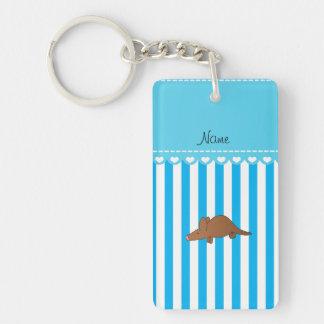 Personalized name aardvark blue white stripes rectangle acrylic keychains