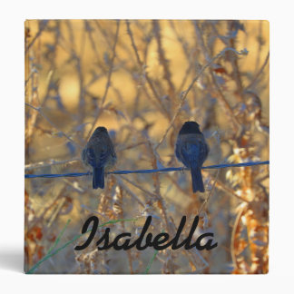 Personalized Name, Romantic sparrow bird couple 3 Ring Binder