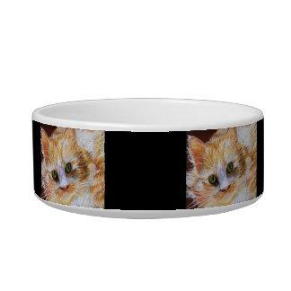 Personalized Orange White Cat Custom Cat Bowl