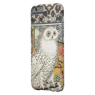 Personalized Owl Damask iPhone 6 case