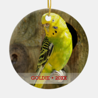 Personalized Pet Bird Photo & Name Christmas Tree Ceramic Ornament