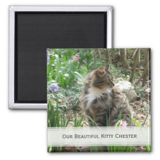 Personalized Pet Magnets: Add Your Picture Magnet