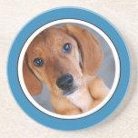 Personalized Pet Photo Blue Frame Coaster