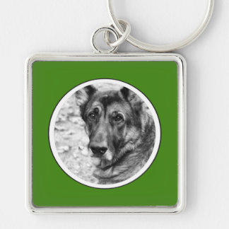 Personalized Pet Photo Green Frame Key Chain