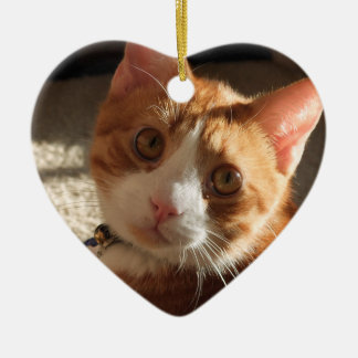 Personalized Pet Photo Heart Ornament