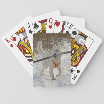 Bride Themed Personalized Pet Photo Playing Cards