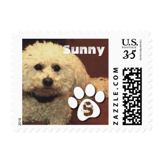Personalized Pet Stamp with Name and Initial A01