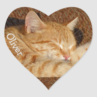 Personalized pet's photo heart sticker