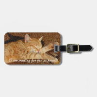 Personalized pet's photo luggage tag