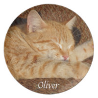 Personalized pet's photo plate
