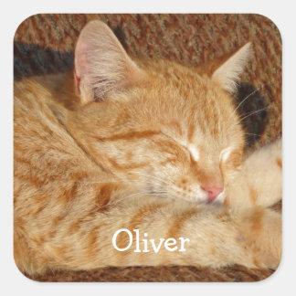 Personalized pet's photo square sticker