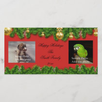 Personalized Photo Christmas Card (2 photos)
