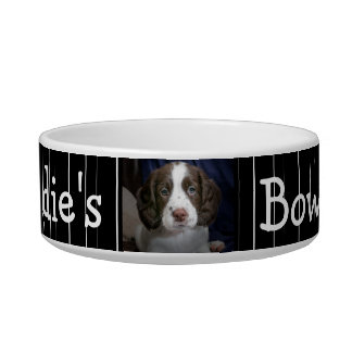 Personalized Photo Dog Bowl Black and White stripe